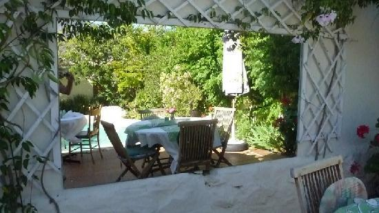 John Montagu Guest House: terrace with swimming pool