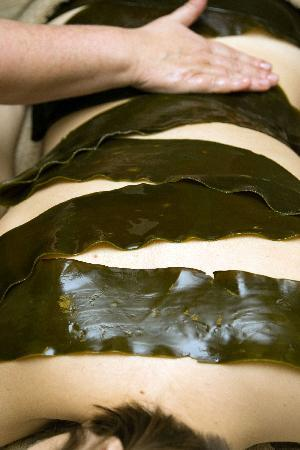 Voya Seaweed Baths: Award Winning Seaweed Wrap