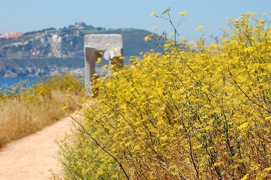 Tower of Hercules (Torre de Hercules) : uno dei percorsi che conduce alla Torre