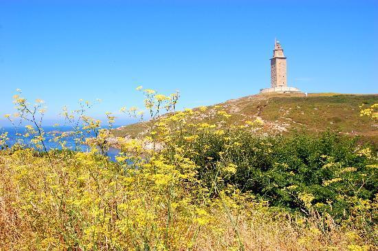 Tower of Hercules (Torre de Hercules) : panorama intorno alla Torre di ercole