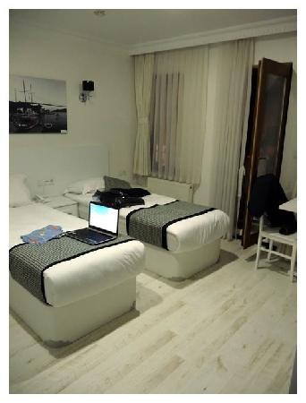 Hot Suites Taksim: Room.