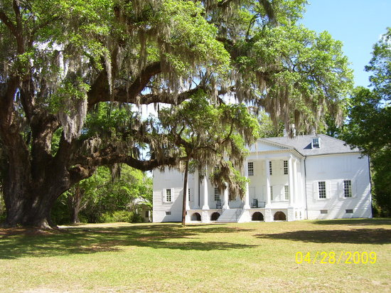 Hampton Plantation State Historic Site: Historic Hampton Plantation