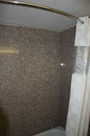 Ramada Medford Hotel and Conference Center: The bathtub/shower