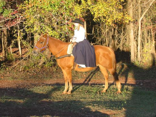 Southern Cross Ranch: Riding