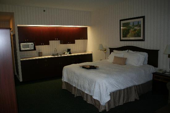 Hampton Inn by Hilton Ottawa : Large room with kitchenette, very roomy