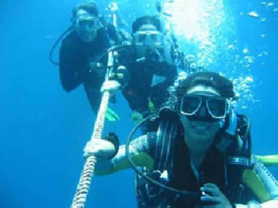 Scuba Diving Krabi Thailand