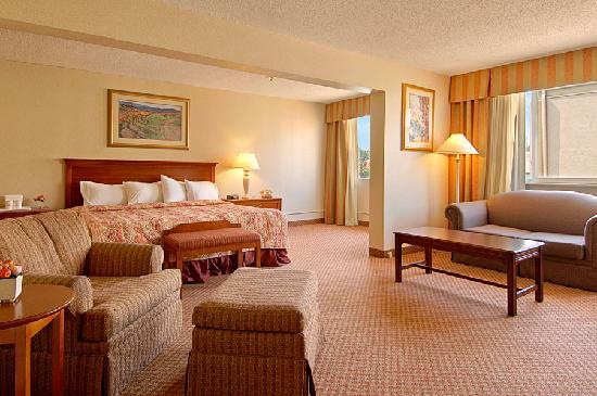 Ramada Cortland Hotel and Conference Center: Executive Suite