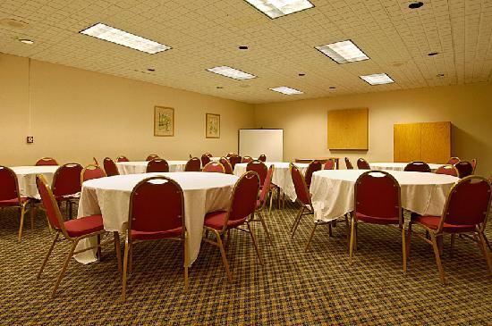 Ramada Cortland Hotel and Conference Center: Meeting Room