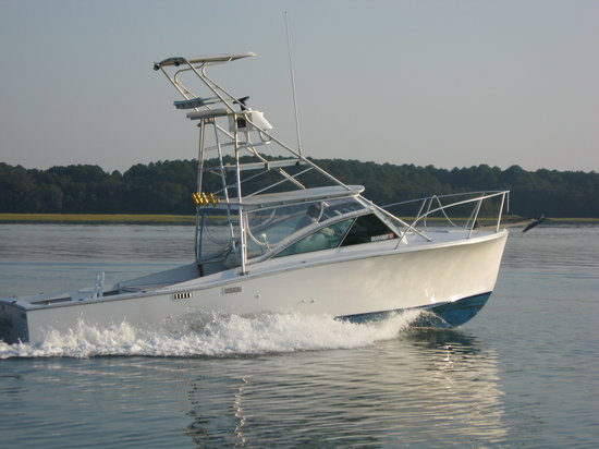 Bulldog Fishing Charters