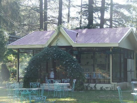 WelcomHeritage Woodville Palace Shimla: Garden
