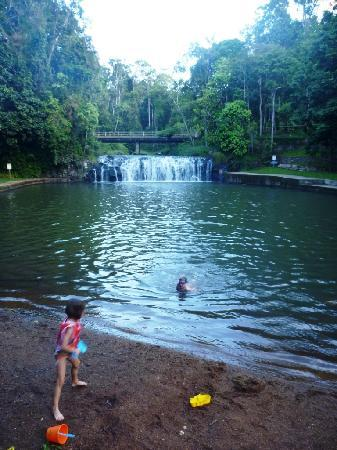 Malanda Falls Caravan Park: Swimming at Malanda Falls.  The caravan park is just up a path on the left, and on the right is