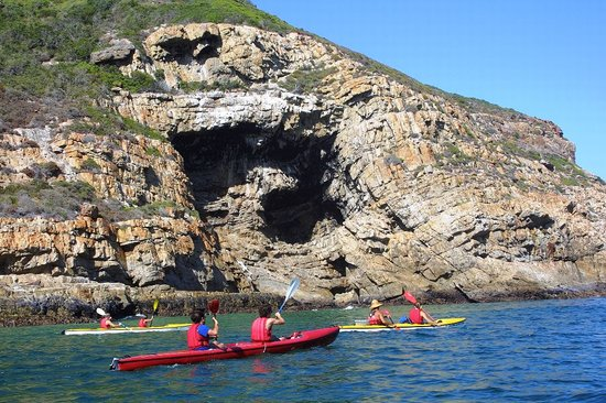 Dolphin Adventures: paddling at robberg