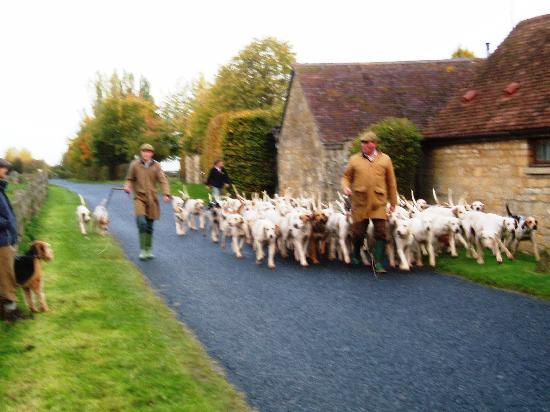 Broadway Manor Cottages: Exercising the Hounds