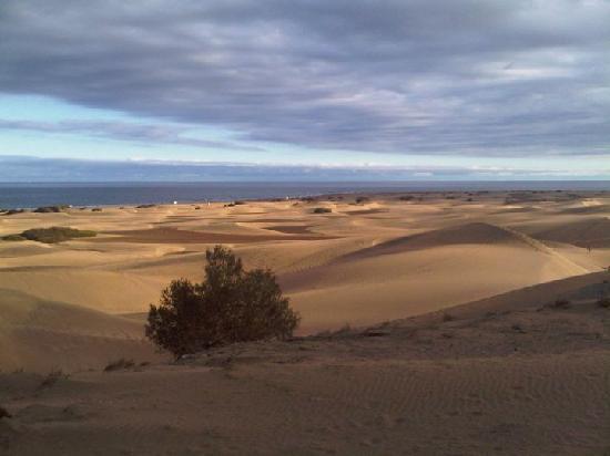 Green Park Apartments: The sand dunes on Maspalomas