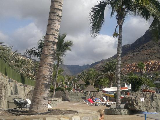 Paradise Costa Taurito: Nearby hills and palm-trees