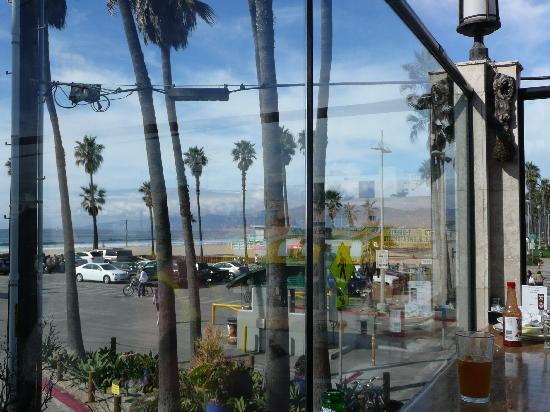 Venice Whaler Bar & Grill : The view
