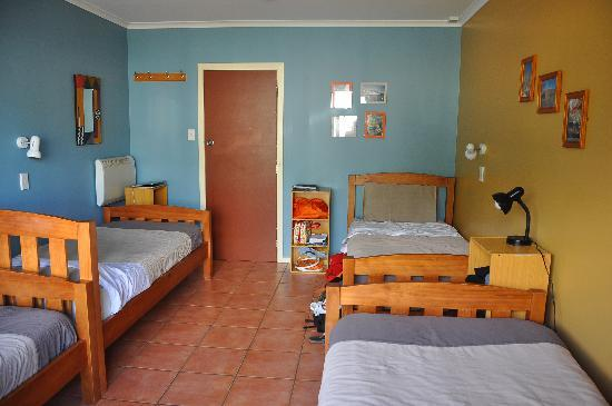 The Bug Backpackers: The great rooms