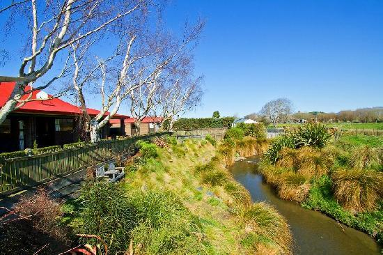 Admiral Creighton Bed & Breakfast: See the Eels and Trout being fed each morning