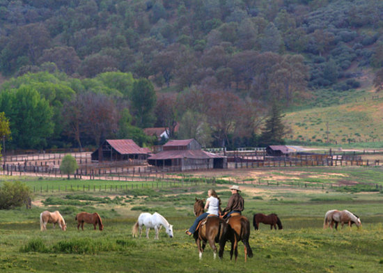 Rankin Ranch: Great Trail Rides