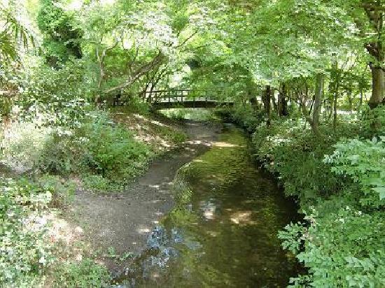 Yufuin Area: 湯布院、橋から