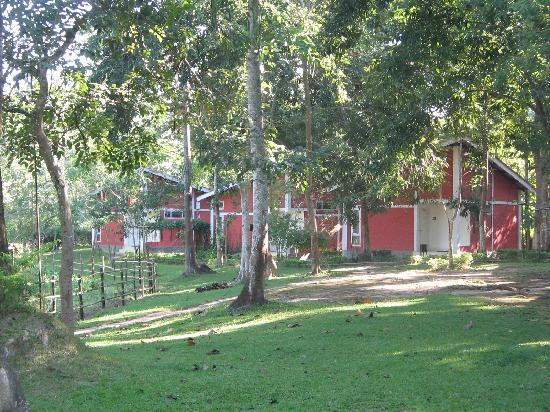 Bon Habi Resort: Cottages