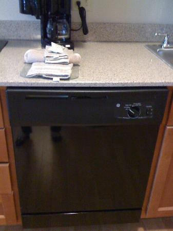 Candlewood Suites San Antonio N - Stone Oak Area: Room 209 Dishwasher Nov 2010