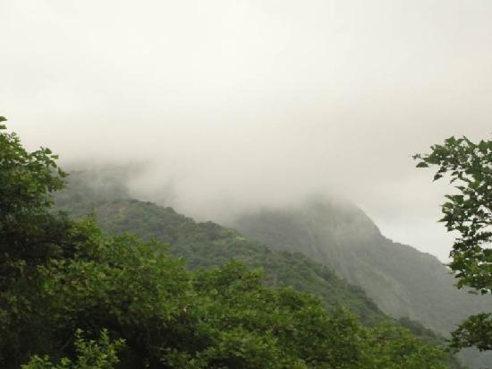 Mount Abu, India: nature