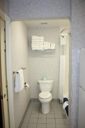 Travelodge Redding CA: Bathroom area