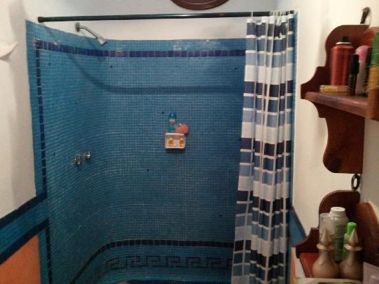Casa Freud: Super Shower