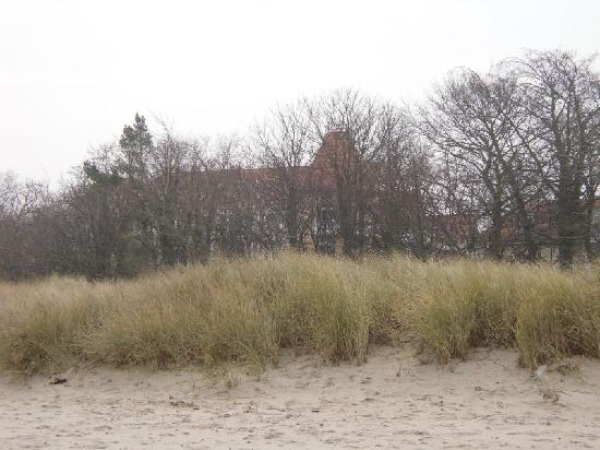 Aparthotel Am Weststrand: Strand 3