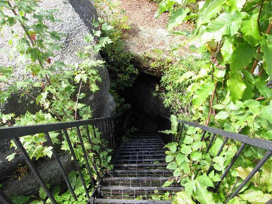 Olean, NY: Stairs to trail among the rocks
