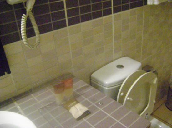 Protea Hotel Kampala: de badkamers