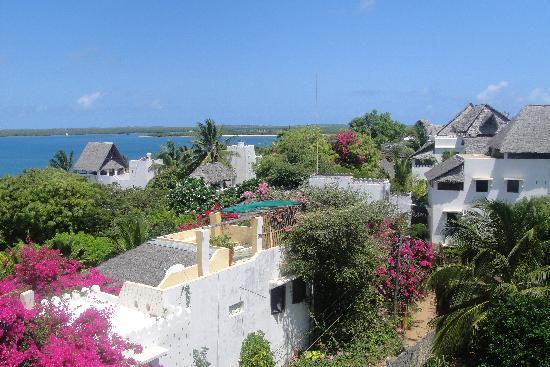 """Lamu Island, Kenya: Mein """"Arbeitsplatz"""" in Shela"""
