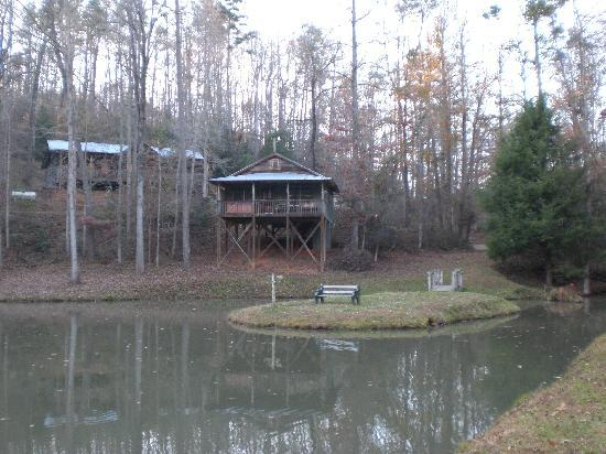 Cavender Creek Cabins Resort: Cabins across the pond