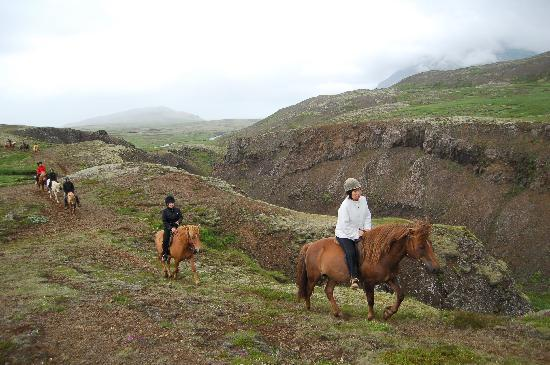Mosfellsbaer, Iceland: In the hills, summer