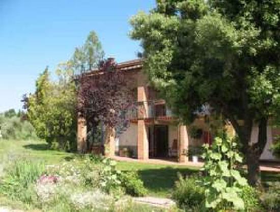 Campeggio Belmondo Montepulciano: the farm