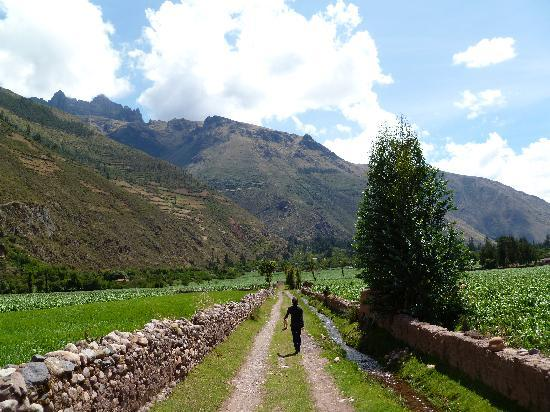 The Green House Peru : On the trail with Lyka