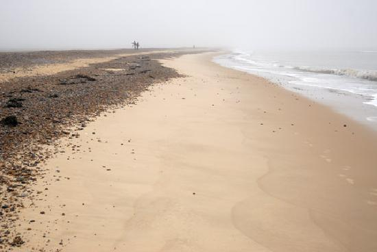 Dunwich, UK: Beach