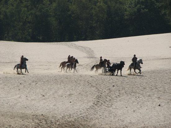 Ermenonville, فرنسا: le spectacle sur le désert