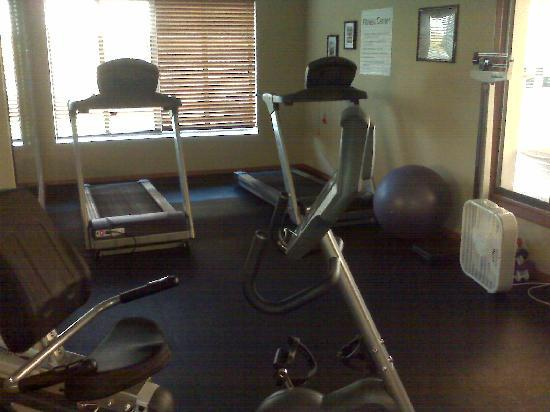 Holiday Inn Express Hotel & Suites East Lansing: Gym
