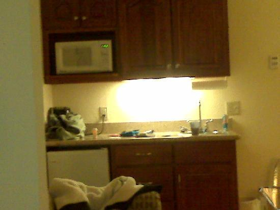 Holiday Inn Express Hotel & Suites East Lansing: Kitchenette