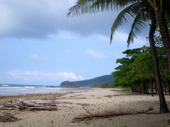 Point Break Surf School: Playa Grande in November (after storms)