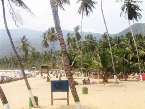 Choroni, Venezuela: Playa Grande