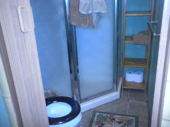 Hale Ho'omana: What they consider a bathroom, notice no sink.