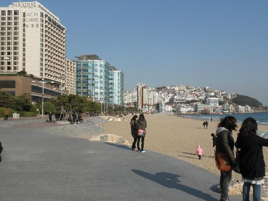 Haeundae Beach : ビーチ