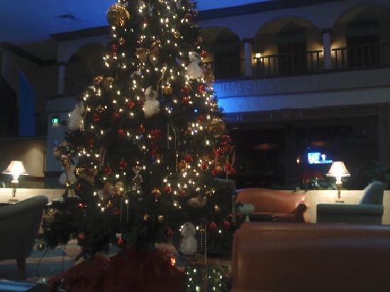 Holiday Inn Corpus Christi Airport Hotel & Conference Center : Lobby and Bar