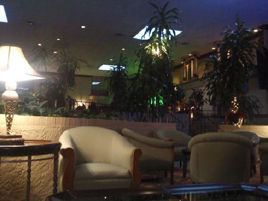 Holiday Inn Corpus Christi Airport Hotel & Conference Center : Lobby