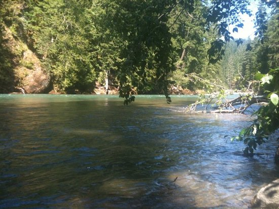 Randle, WA: The Cowlitz River