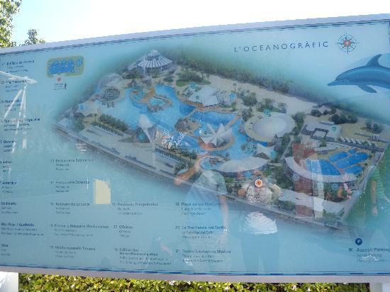 Oceanografic: Plan du parc