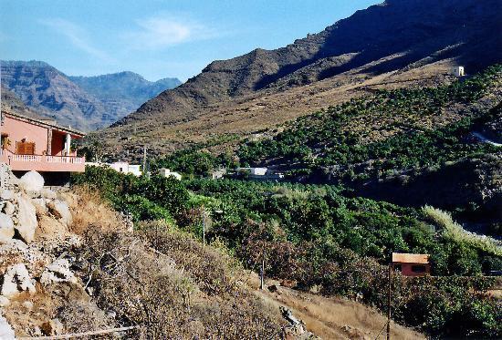 Finca Casitas Tia Carmen : Casitagelände und Tal von Mogán